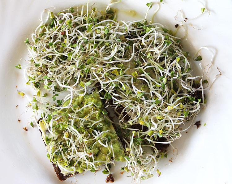 Brocco sprouts 750